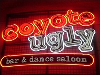 COYOTE UGLY FRANCHISE